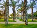 מוזיאון האסלם בבאר שבע במבט דרך גן רמז המופלא.png