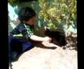 عبد الصمد يلعب مع قطة.png