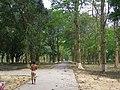 আমার সাথে দেখুন সিংড়া জাতীয় উদ্যান 5.jpg