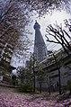 とうきょうスカイツリー - panoramio (9).jpg