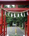 中山神社(さいたま市)参道.JPG