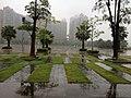 广场 - panoramio (12).jpg
