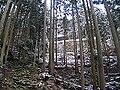東窟寺岩屋観音P1141158.jpg