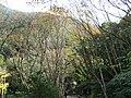 滿月圓森林遊樂區 Manyueyuan Forest Recreation Area - panoramio.jpg