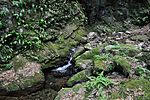 白岩の滝 - panoramio (16).jpg
