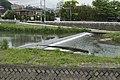 紫川 - panoramio (4).jpg