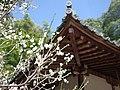 観心寺にて 牛滝堂 2013.3.15 - panoramio (1).jpg