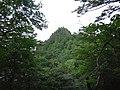 諏訪山方面からの三笠山.jpg