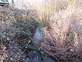 -2021-01-31 Tributary of the river Ant at Bacton wood Bridge (1).JPG