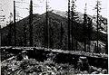 01915 Makowka, Blick auf die Klewa.Russische Schützengraben. Deutsche Südarmee, Erster Weltkrieg.jpg