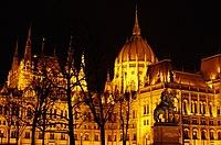 03 2019 photo Paolo Villa - F0197924 - Budapest - Parlamento - notte - luci - cupola - alberi - Neomedievalismo Neogotico.jpg