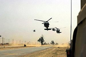Black Hawk helicopters from the 2nd Brigade, 1...