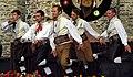 12.8.17 Domazlice Festival 219 (36158038310).jpg