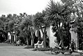 1939- Ventura, California (2784666328).jpg
