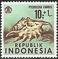 1969 Indonesia stamp Pterocera lambis.jpg