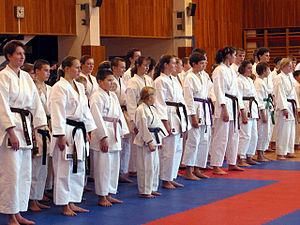 Senpai and kōhai - At the international level the senpai–kōhai relation has spread through martial arts, in which the members of different kyū and dan levels are sorted by belt colour.