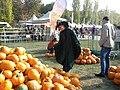 2. Bucharest, Romania. Pumpkin Fest. Primul Festival de Halloween din Romania. Oct. 2019. (Frumoasa vrajitoare alege).jpg