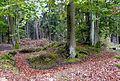 200910070935MEZ Wp 10-10 Holz Nord 1.jpg