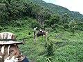 2010년 8월 태국 제16기 소방간부후보생 윤석민, 김영진, 최광모 하계휴가 사진 227 Kwangmo's iPhone.jpg