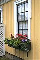 2010 windowbox Connecticut USA 4694752952.jpg