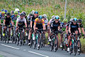 2012 Tour of Britain Team Sky.jpg
