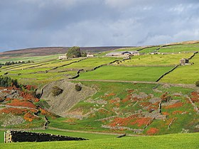 2013 Yorkshire Dales Whaw.jpg