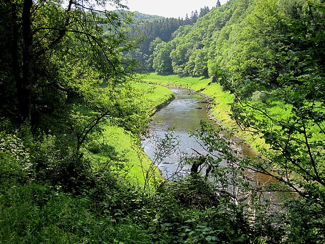Eifel national park national park in germany the west for Hotels in eifel germany