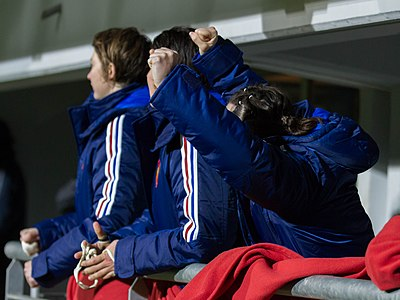 2014 Women's Six Nations Championship - France Italy (133).jpg
