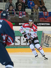 20150207 1940 Ice Hockey AUT SVK 0220.jpg