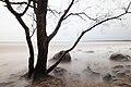 20151206-03(Vidzemes akmeņainā jūrmala).jpg