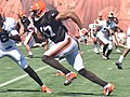 2015 Cleveland Browns Training Camp (20058629478).jpg