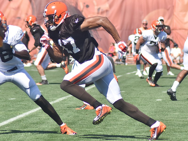 File:2015 Cleveland Browns Training Camp (20058629478).jpg