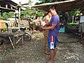 2016-09-28 Cockfighting in Buaya, Lapu-Lapu City, Cebu, Philippines ブアヤ村の闘鶏をする男たち DSCF6700.jpg