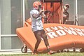 2016 Cleveland Browns Training Camp (28076543143).jpg