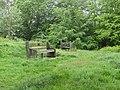 2018-05-20 National Trust, West Runton and Beeston Regis Heath (2).JPG