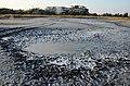 2021. Мойнакское озеро DSC 5875.jpg