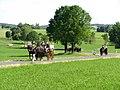 21te Rammenauer Schlossrundfahrt der Pferdegespanne (006).jpg