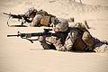 24th MEU conducts a Kilo Co. Squad Exercise 150214-M-AR522-021.jpg