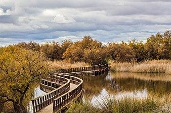 291114D-Tablas Daimiel - El puente - Castilla-La Mancha.jpg
