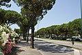 33054 Lignano Sabbiadoro, Province of Udine, Italy - panoramio.jpg