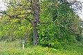 46-215-5001 Dibrova Reserve RB 18.jpg