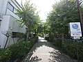 4 Chome Ichinomiya, Samukawa-machi, Kōza-gun, Kanagawa-ken 253-0111, Japan - panoramio.jpg