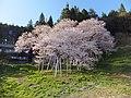 5 Chome Ishiuramachi, Takayama-shi, Gifu-ken 506-0825, Japan - panoramio (2).jpg