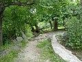 Ağa çınarları - panoramio.jpg