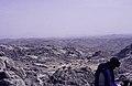 ASC Leiden - van Achterberg Collection - 16 - 46 - Un chamelier près de Sonarem - Ahaggar, Algérie - Avril 1991.jpg