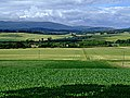 A View from the Strath Conon Road - geograph.org.uk - 208164.jpg