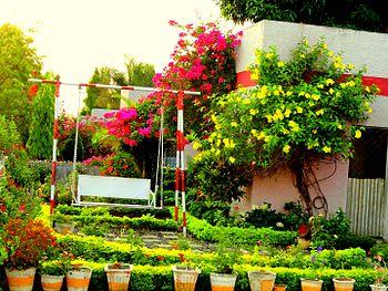 A beautiful Garden.jpg