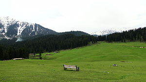 Doodhpathri - Image: A bench with scenic view Doodhpathri southwest Jammu Kashmir India