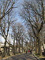 A street in the Père-Lachaise Cemetery, Paris 20 February 2007.jpg