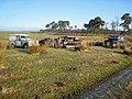 Abandoned vehicles at Dumblar Rigg - geograph.org.uk - 637148.jpg